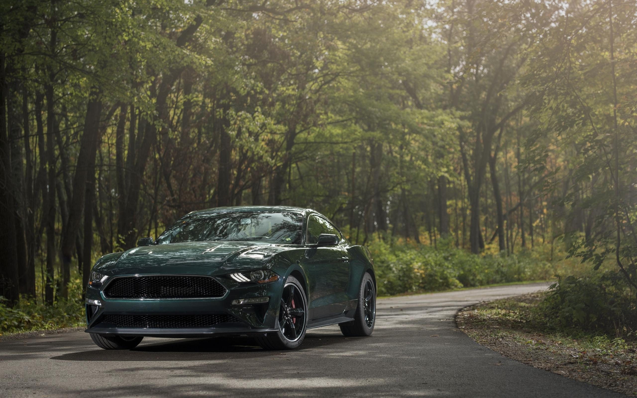 Wallpaper of Car Ford Mustang Bullitt Green Car Muscle Car 2560x1600