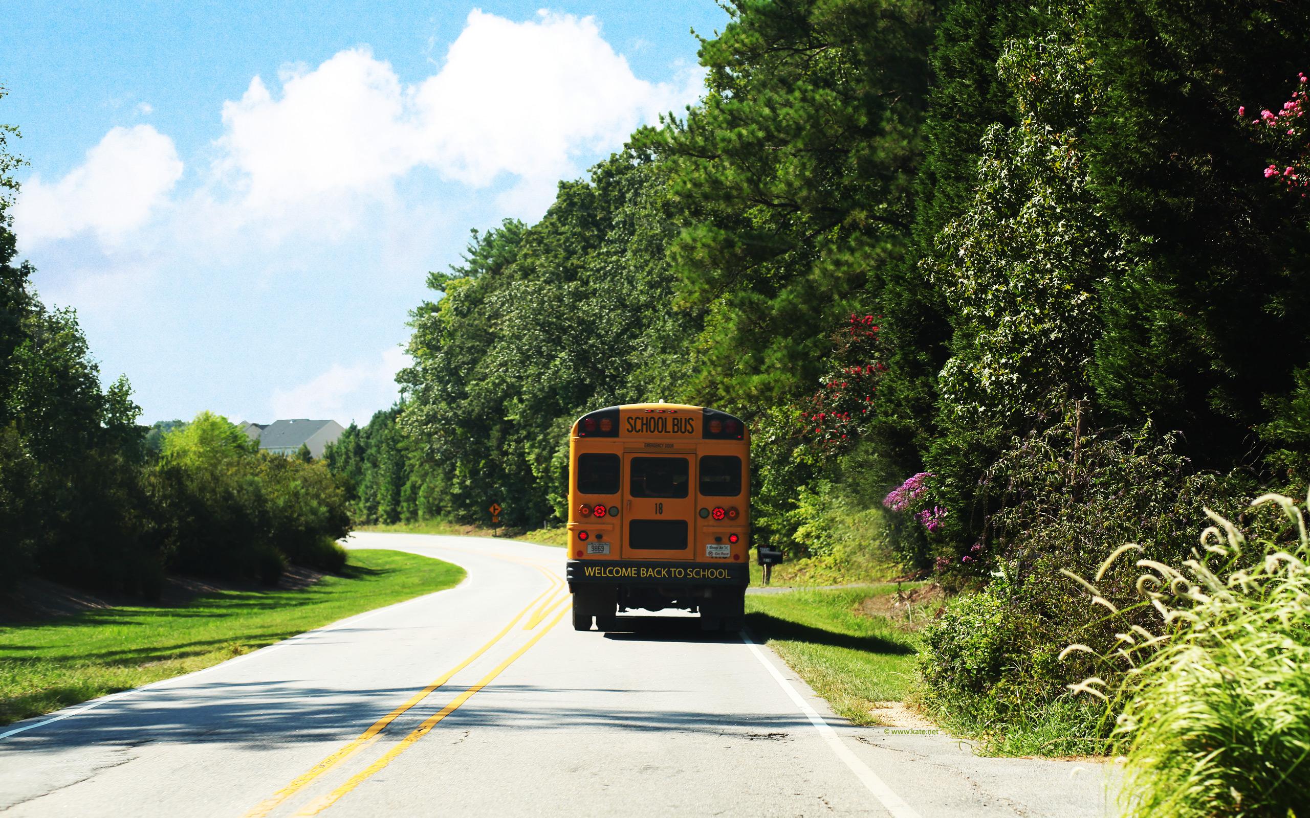 School Back to School Wallpapers by Katenet 2560x1600