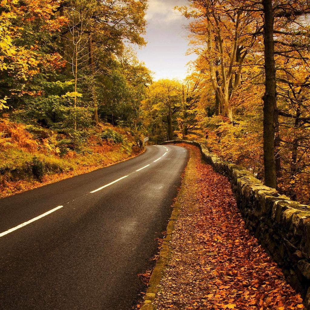 Autumn highway iPad Wallpaper Download iPhone Wallpapers iPad 1024x1024
