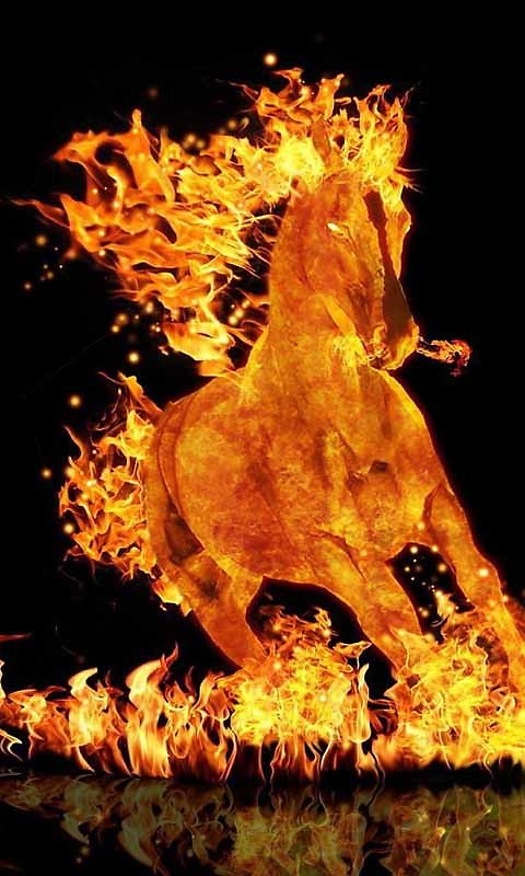 the Fire Horse Live Wallpaper App to your Android phone or tablet 480x800