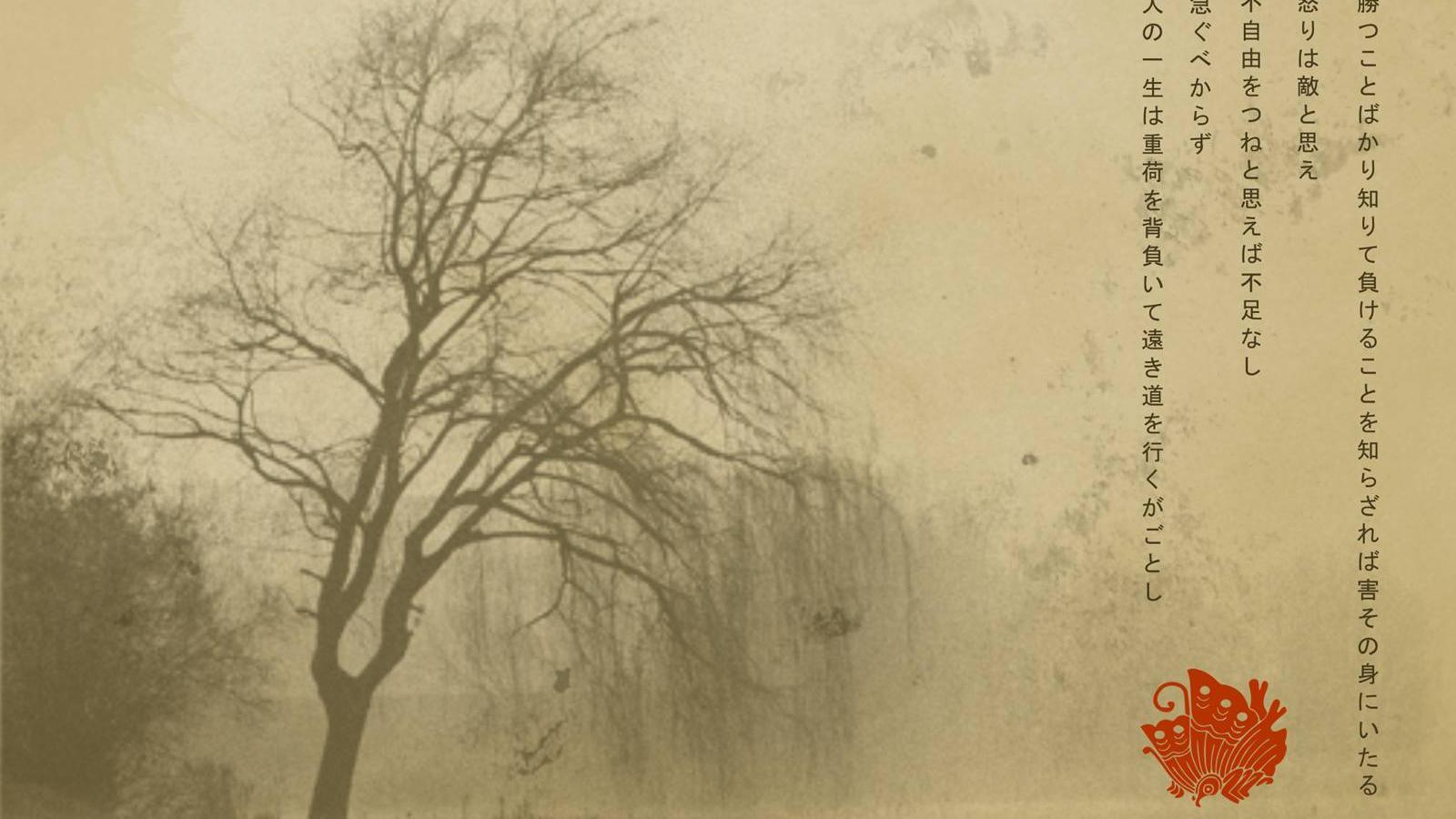 Dark Textured Backgrounds wallpaper 1920x1080 32738 1600x900