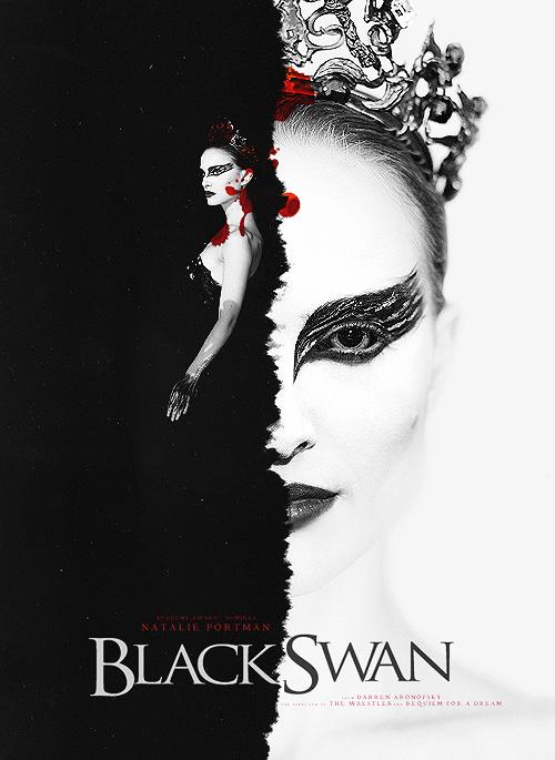 Black Swan images Black Swan wallpaper photos 24689219 500x685