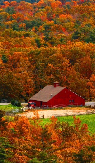 The Farms Autumn Barns Autumn Colors Place Red Barns Fall Color 400x683