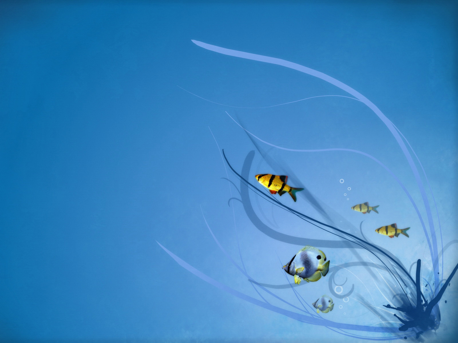 cute fish wallpaper - photo #29