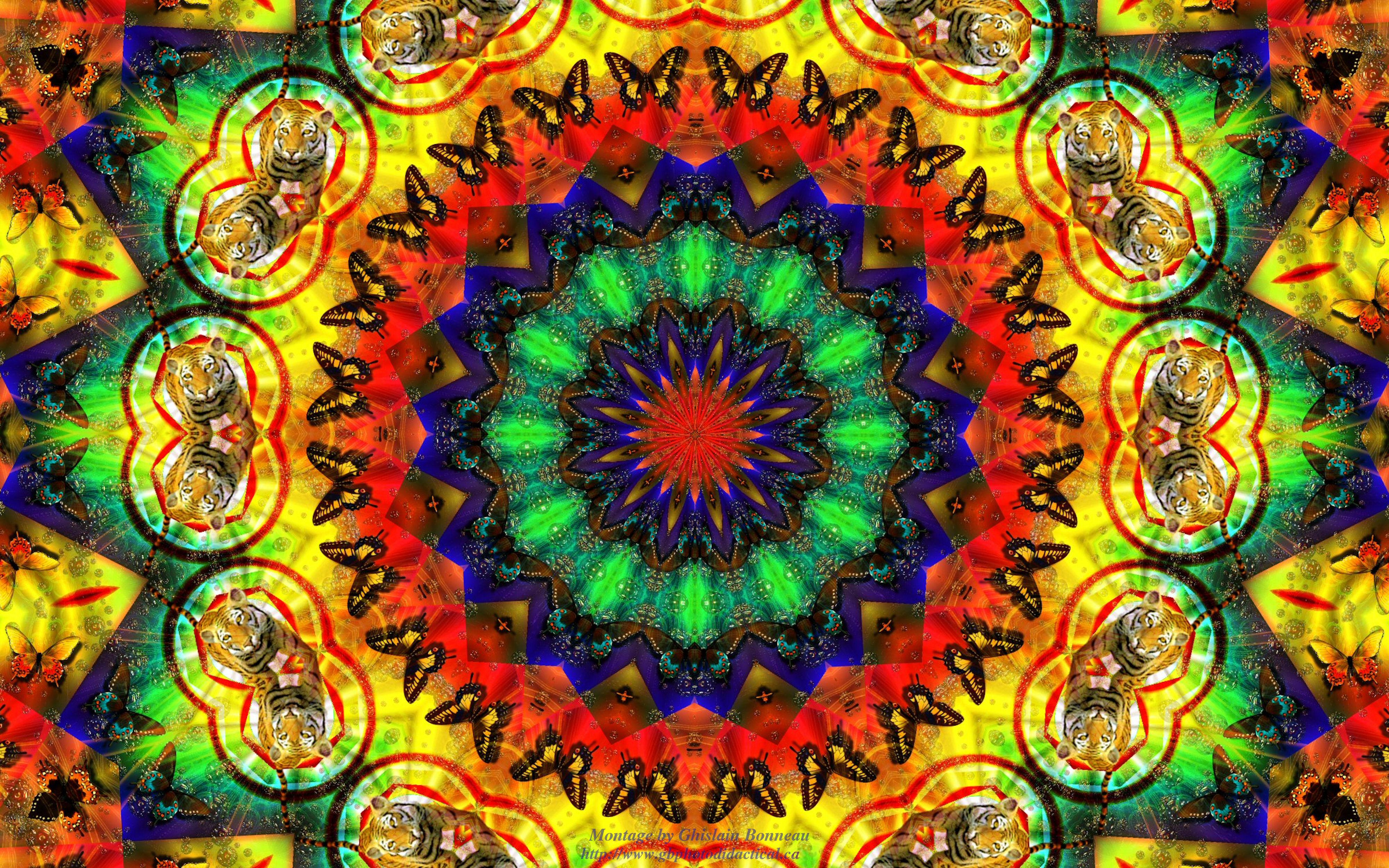 Hippie psychedelic wallpaper 4000x2500