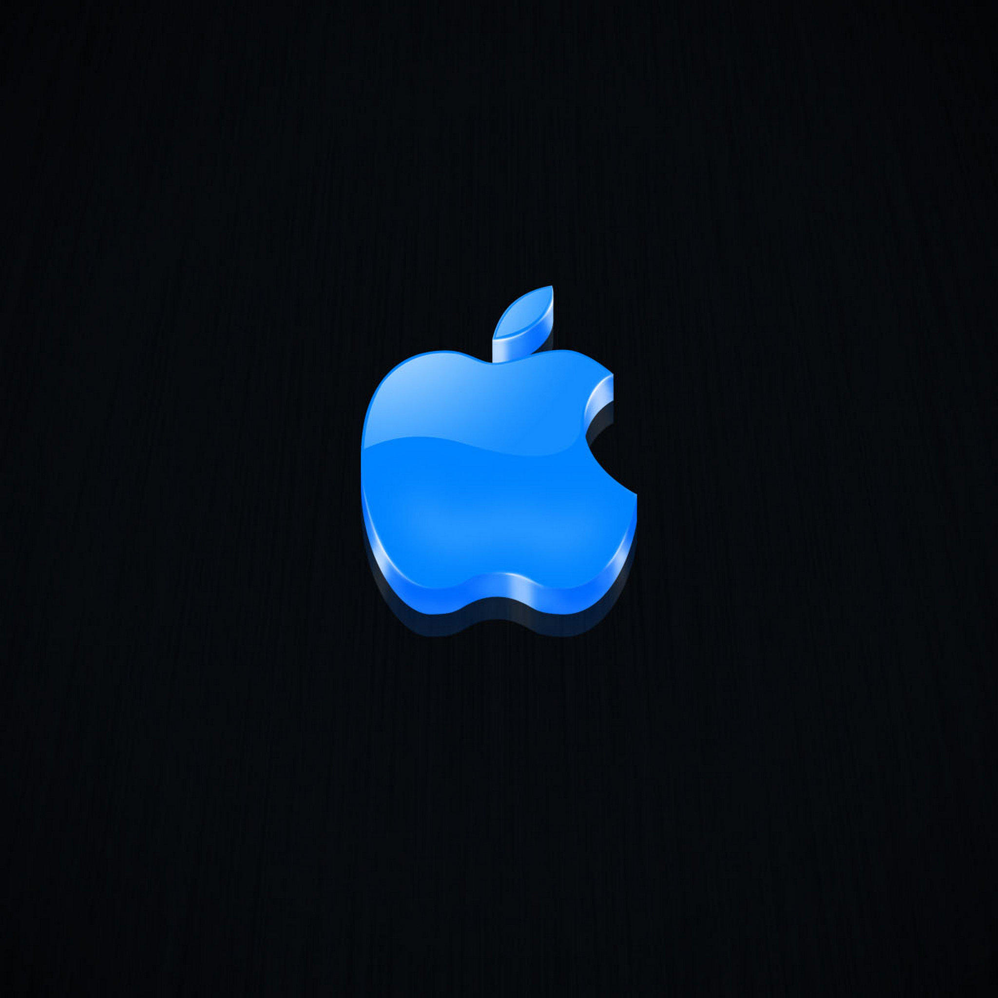 iPad Wallpapers Apple LOGO 025   Apple New iPad iPad 3 iPad 4 2048x2048