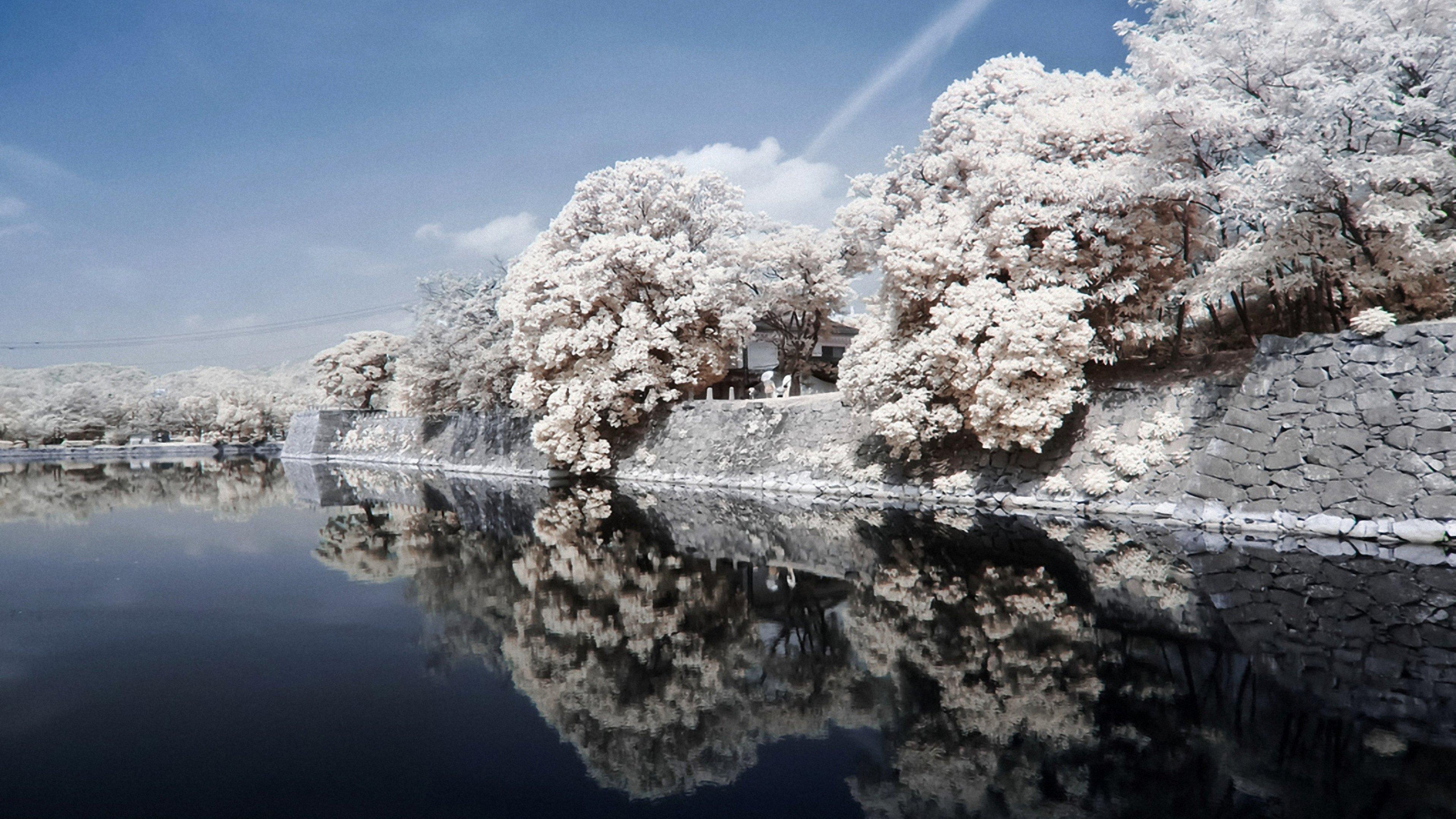 3840x2160 Wallpaper japan coast river stone trees landscape sky 3840x2160