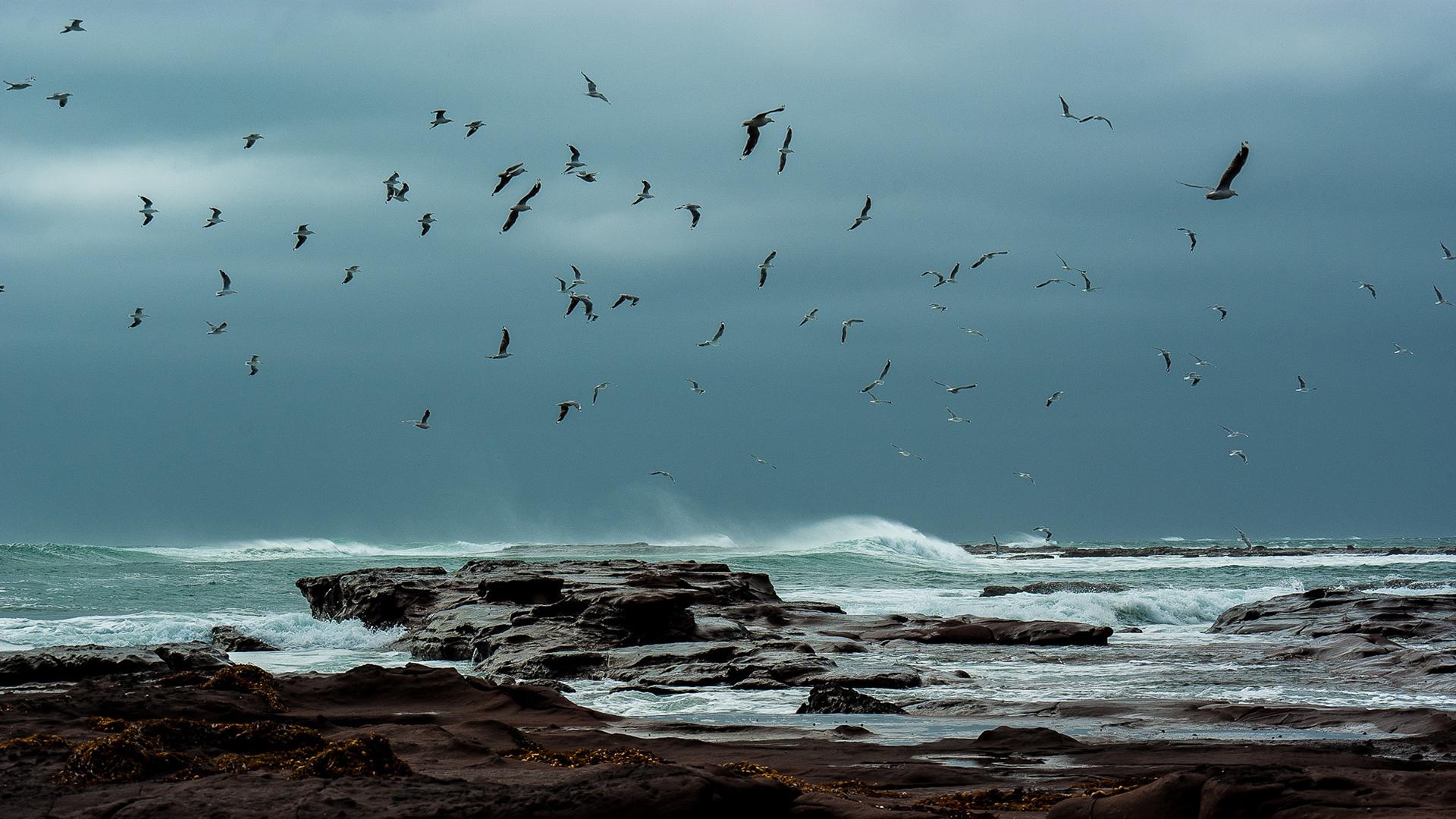 Sea Storm Wallpaper 6809018 1920x1080