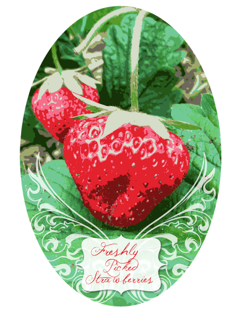 Strawberry kitchen decor theme ceramics Country 481x640