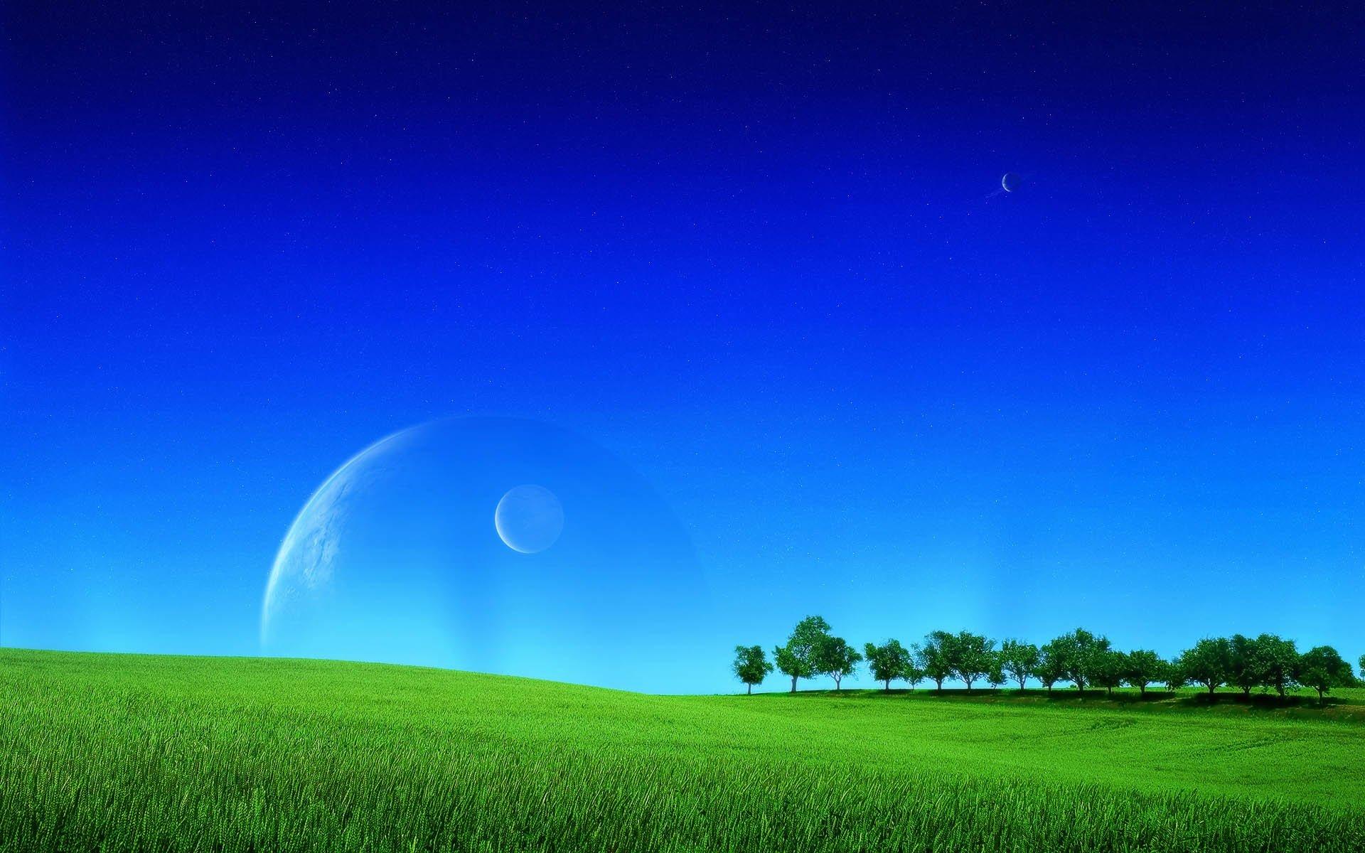 Grassland Background - 1286555