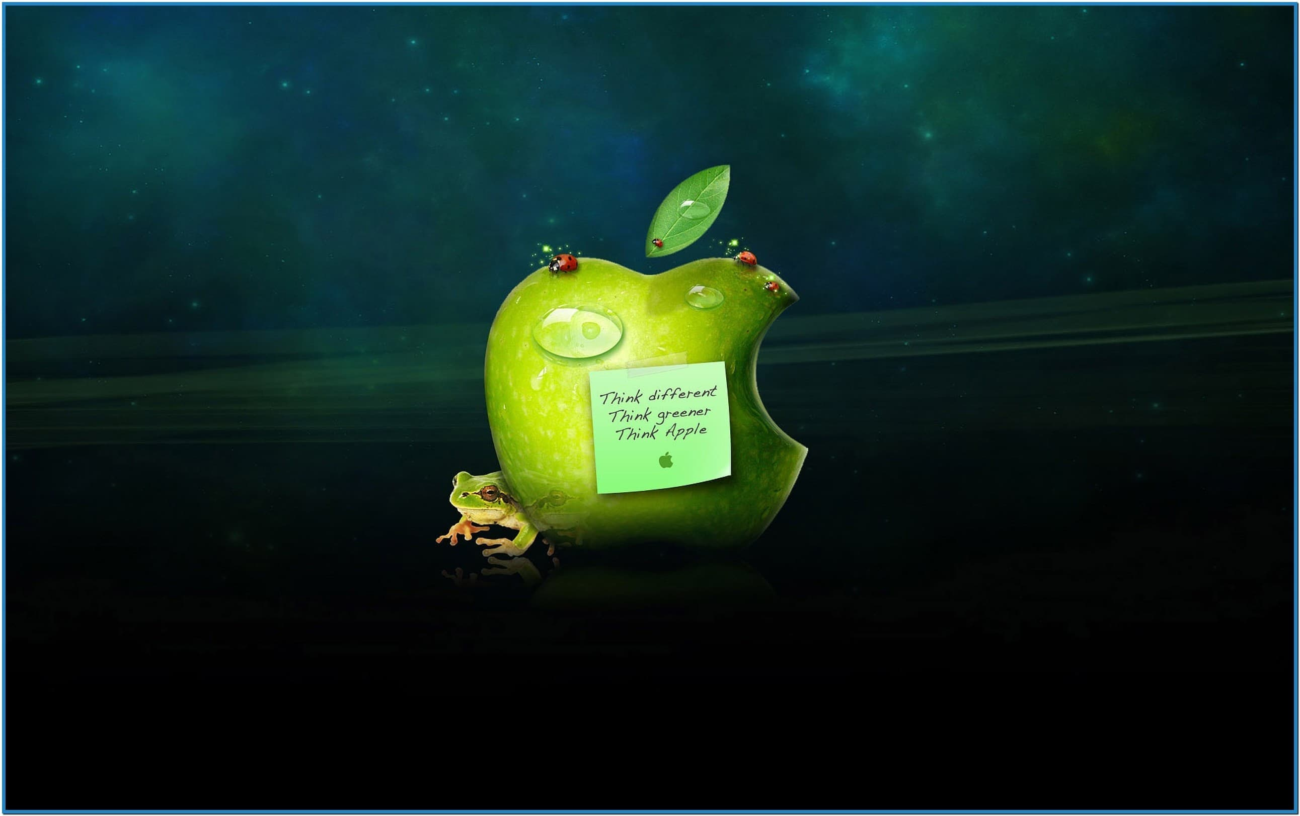 Free screensavers and wallpaper humor wallpapersafari - Funniest screensavers ...