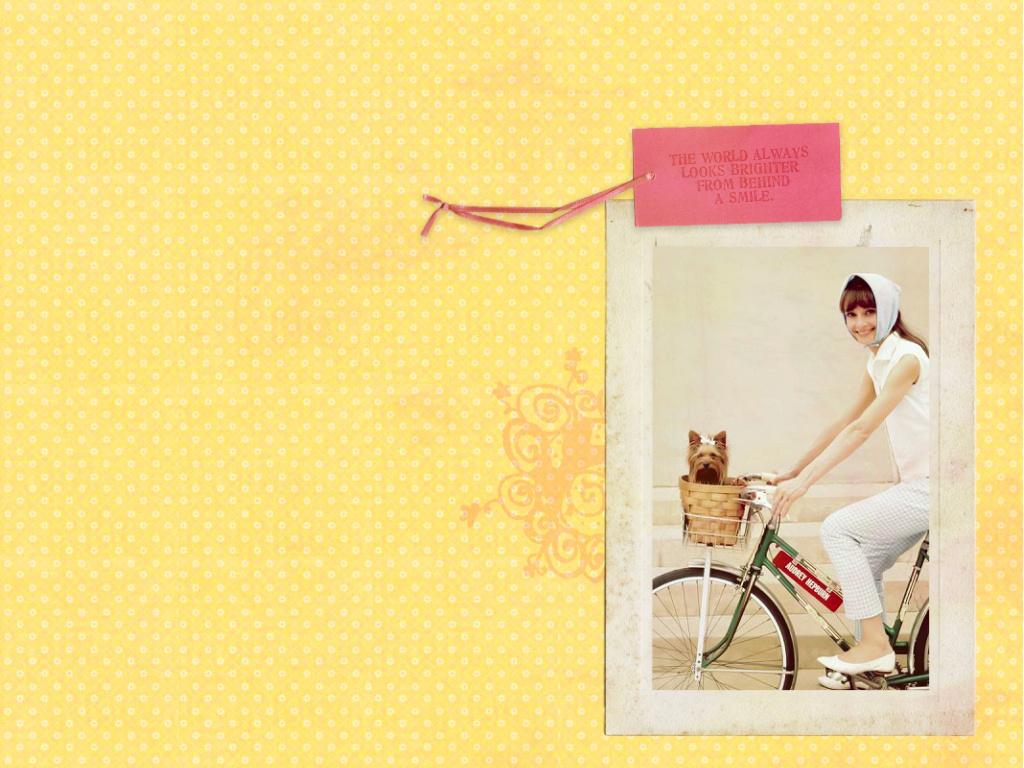 Audrey   Audrey Hepburn Wallpaper 4502958 1024x768