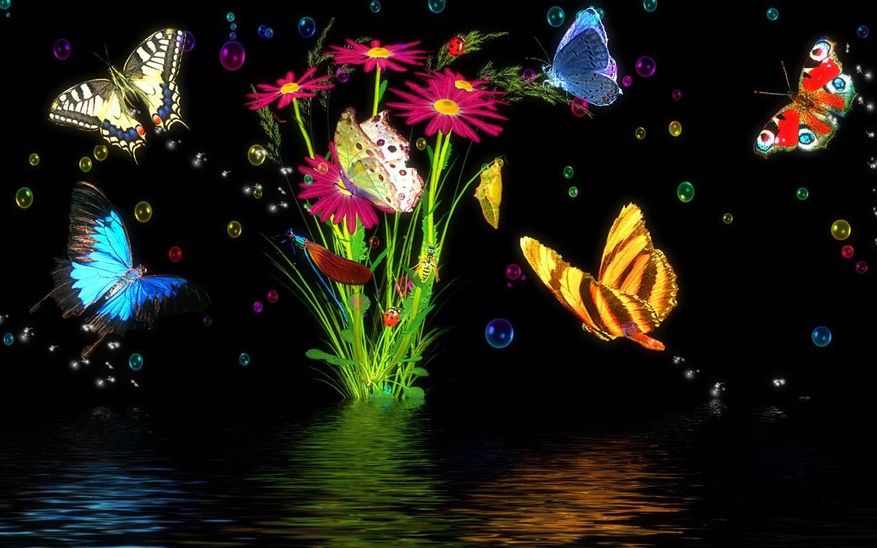 free live wallpaper magic butterfly wallpapersafari