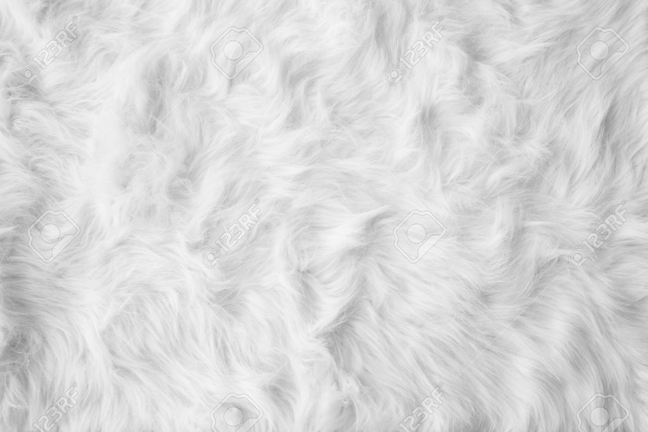 Free Download White Cotton Wool Carpet Background Texture Stock Photo Picture 1300x866 For Your Desktop Mobile Tablet Explore 33 Cotton Background Cotton Background Cotton Candy Wallpaper Cute Cotton Candy Wallpaper