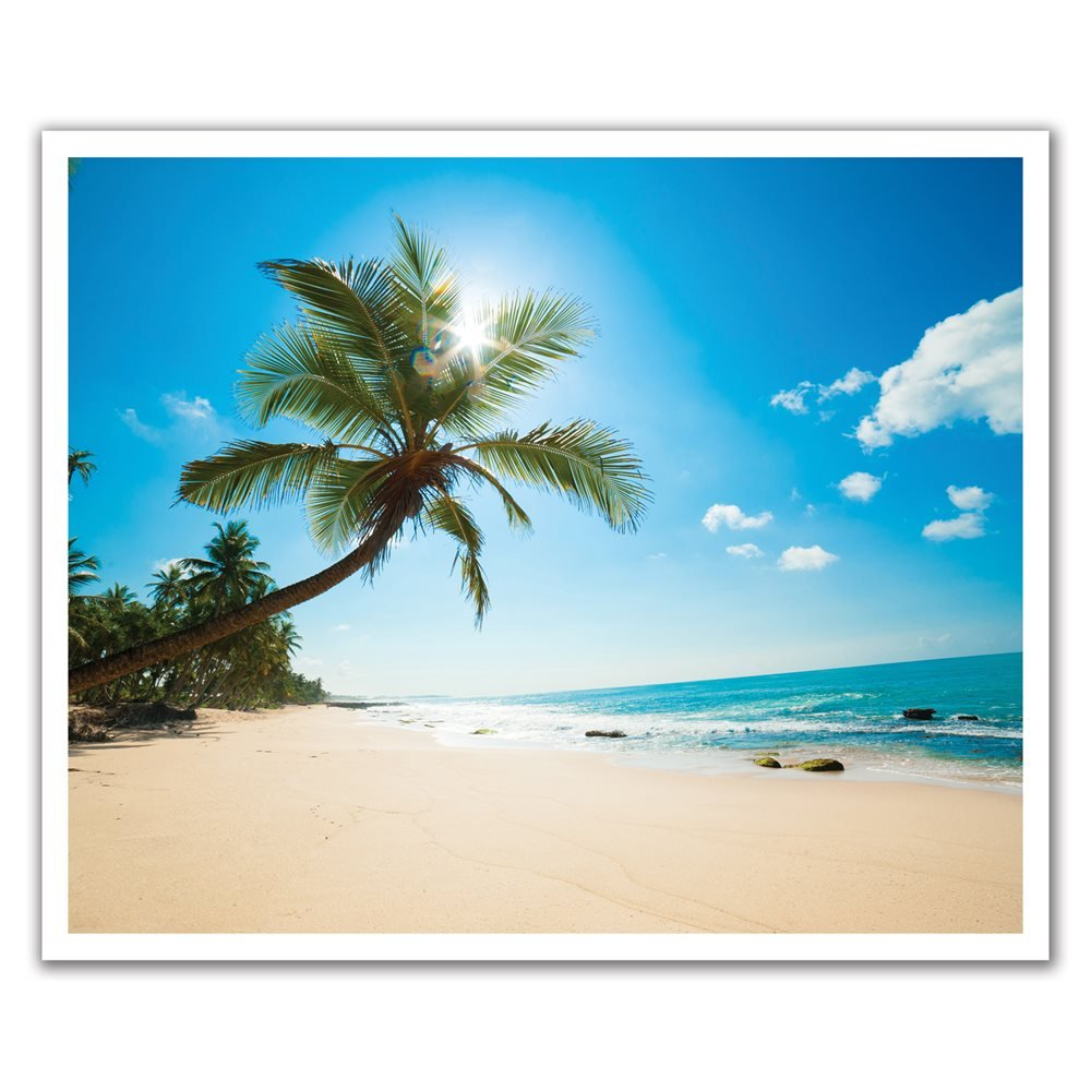 Tropical Ocean Beach Palm Tree uStrip Lite Removable Wallpaper Decal 1000x1000