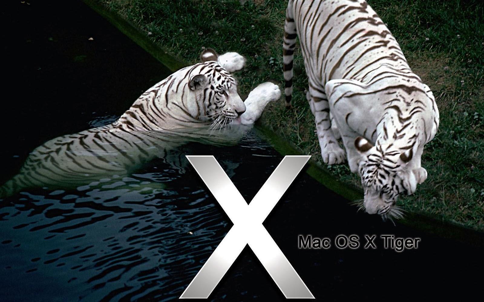 Mac OS X Tiger Wallpapers Mac OS X Tiger Desktop Wallpapers Mac 1600x1000