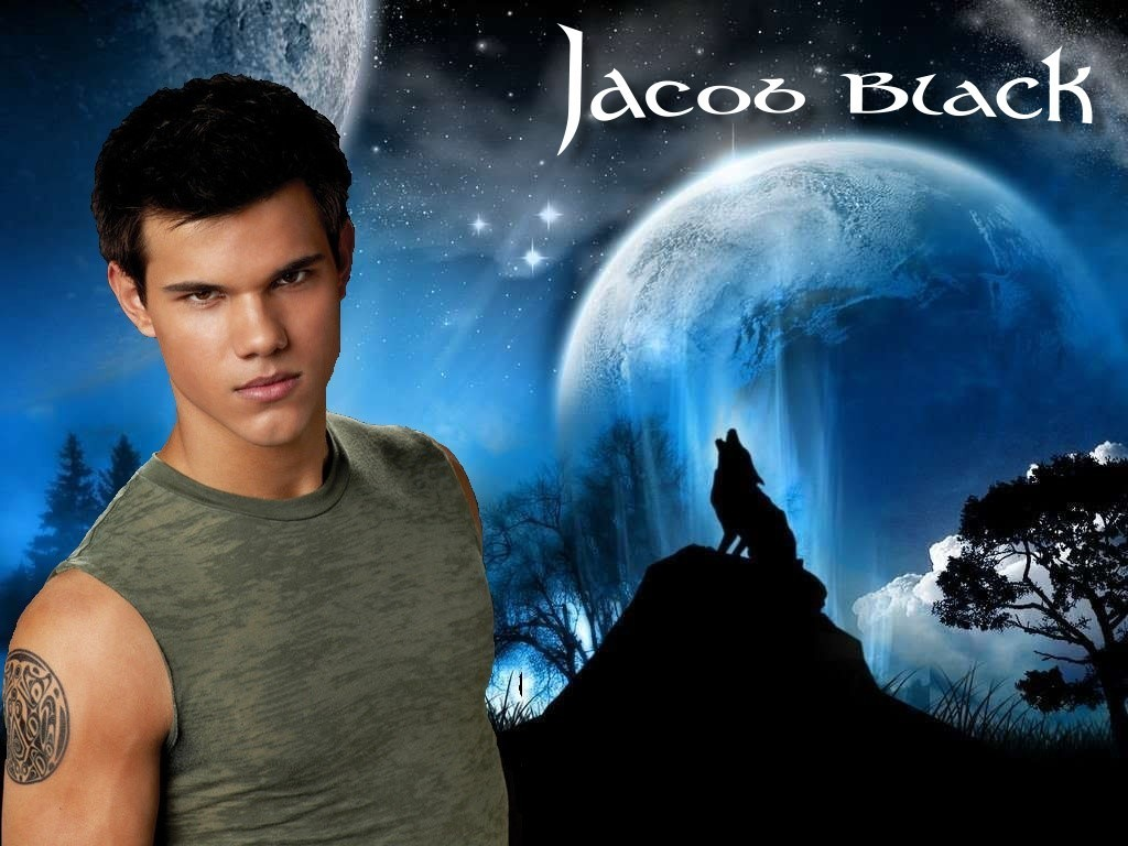 Jacob Black   Wolf   Twilight Series Wallpaper 17273251 1024x768