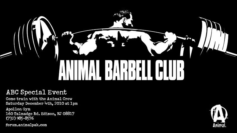 join the animal barbell club animalpak com animal myspace animal 800x450