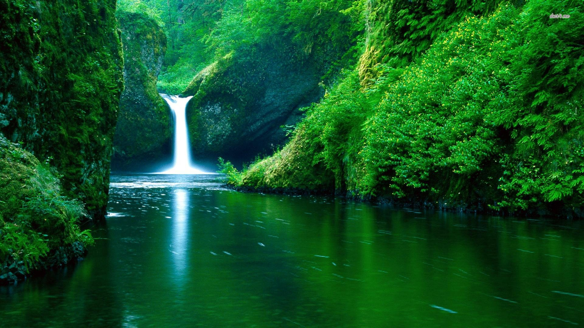 Cool Nature Background wallpaper 1920x1080 26984 1920x1080