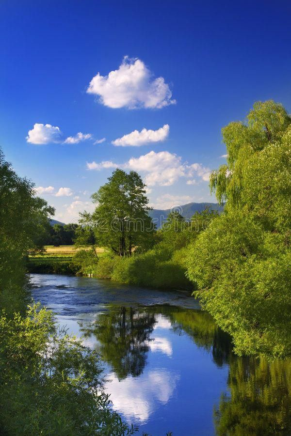 Reflection in the River Landscape with blue sky and tree 600x900