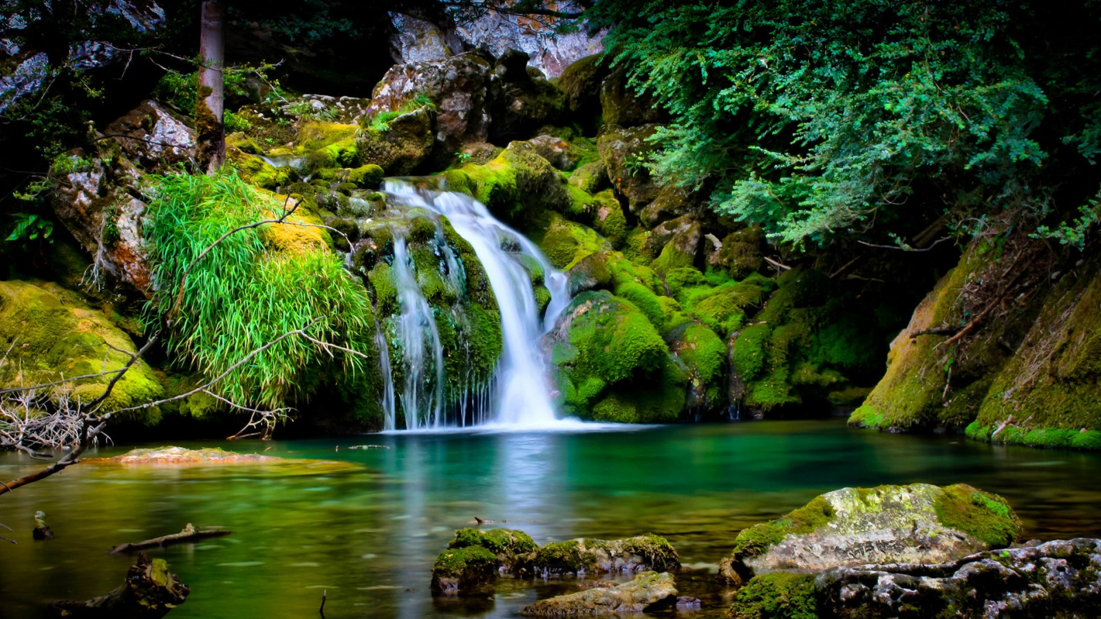 Beautiful Nature Cool Pictures HD Wallpaper of Nature 1600x900