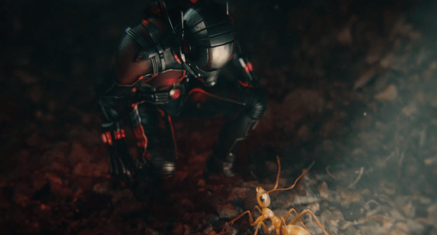 Ant Man Marvel Desktop Wallpapers 1436x773
