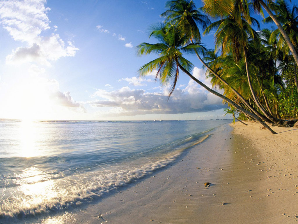 Beach Desktop Backgrounds Beach Wallpapers BeachDesktop Wallpapers 1024x768