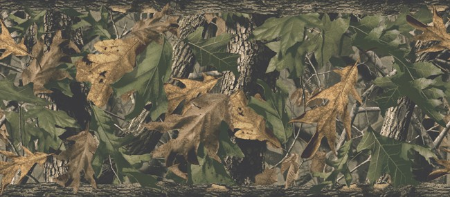 Pink Realtree Wallpaper Border Images Pictures   Becuo 650x285