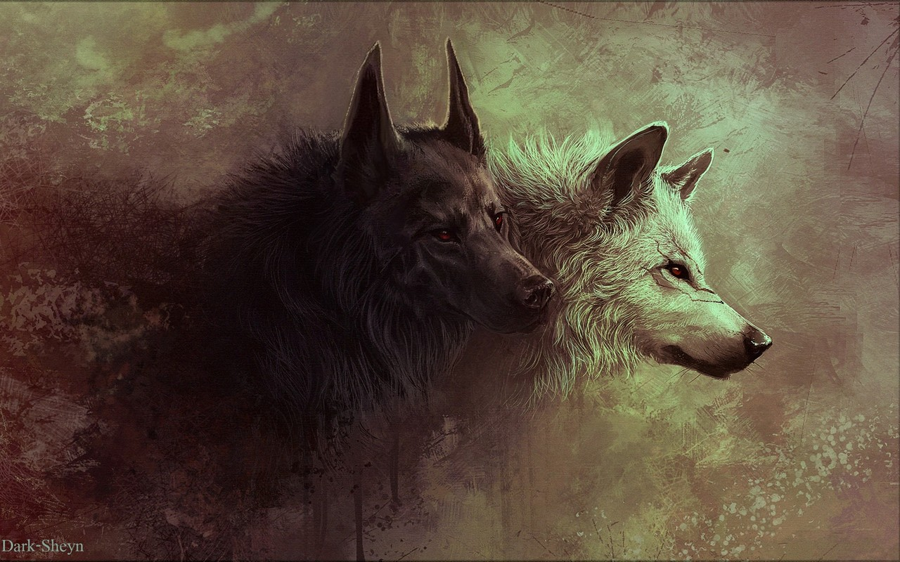 305 notes wolves wild wolf art 1280x800