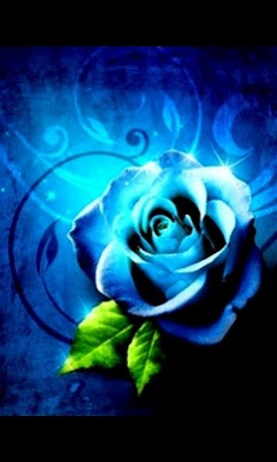 View bigger   Blue Rose 3D Live Wallpaper for Android screenshot 307x512