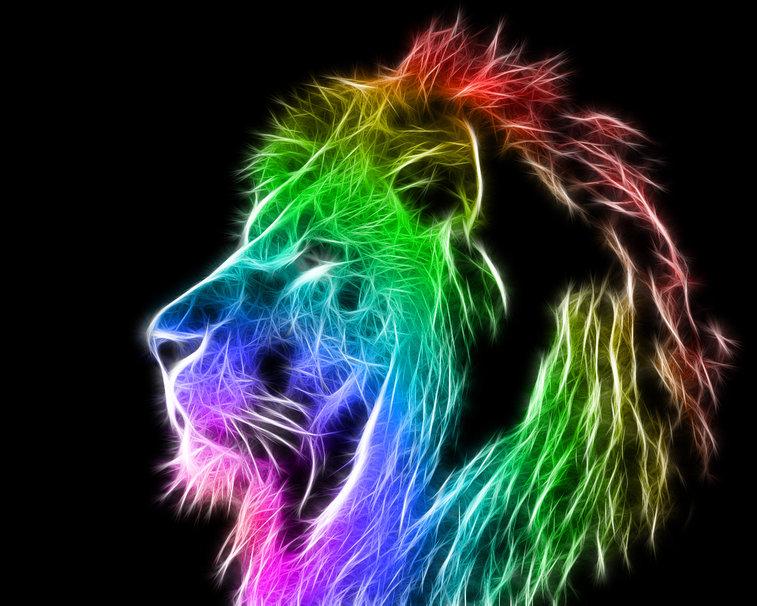 RAINBOW LION wallpaper   ForWallpapercom 757x606