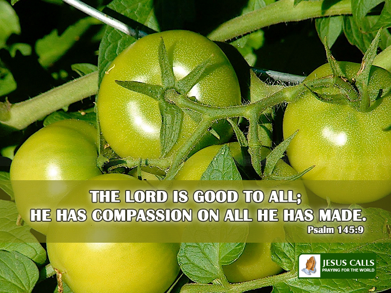 Related to Download HD Christian Bible Verse Greetings Card 800x600