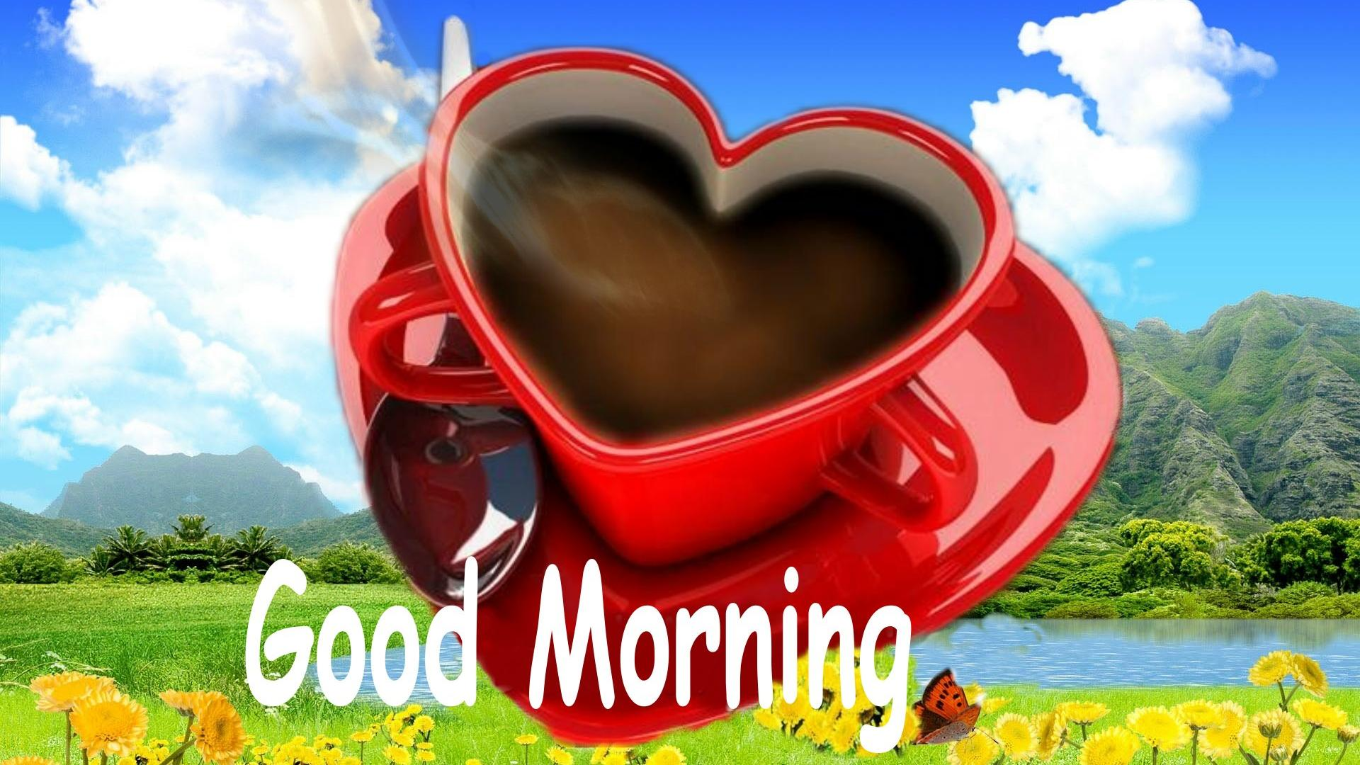 1920x1080px Good Morning Love Wallpaper Wallpapersafari