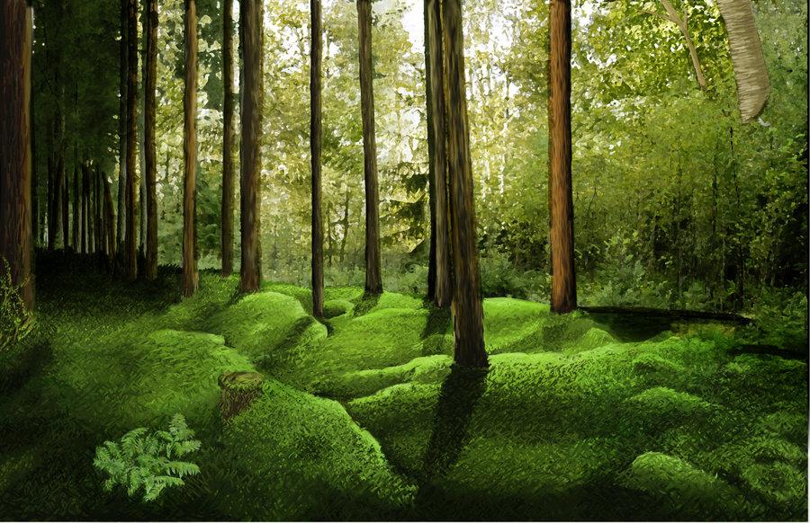 Forest Background by animefreke101 on deviantART 900x582