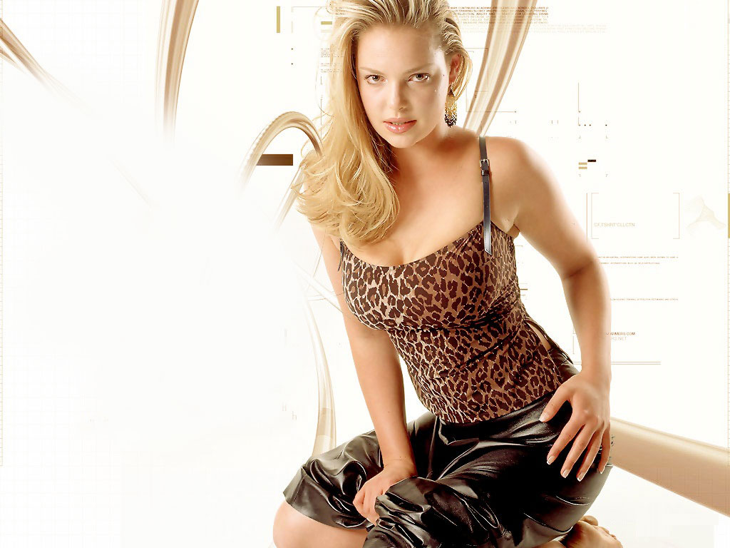 Katherine Heigl HQ Wallpapers Katherine Heigl Wallpapers   27439 1024x768