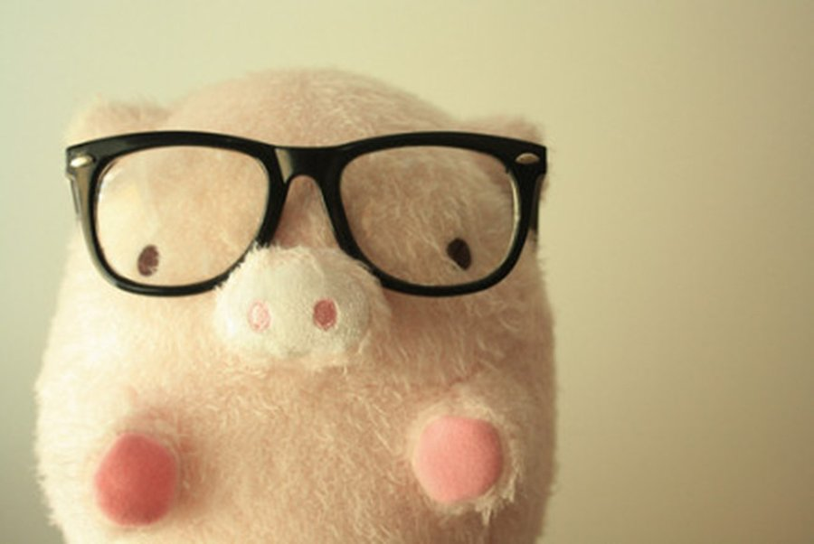 Cute Pig Wallpaper Images Pictures   Becuo 900x602