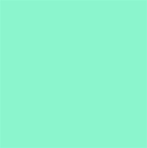 Color Mint 500x502