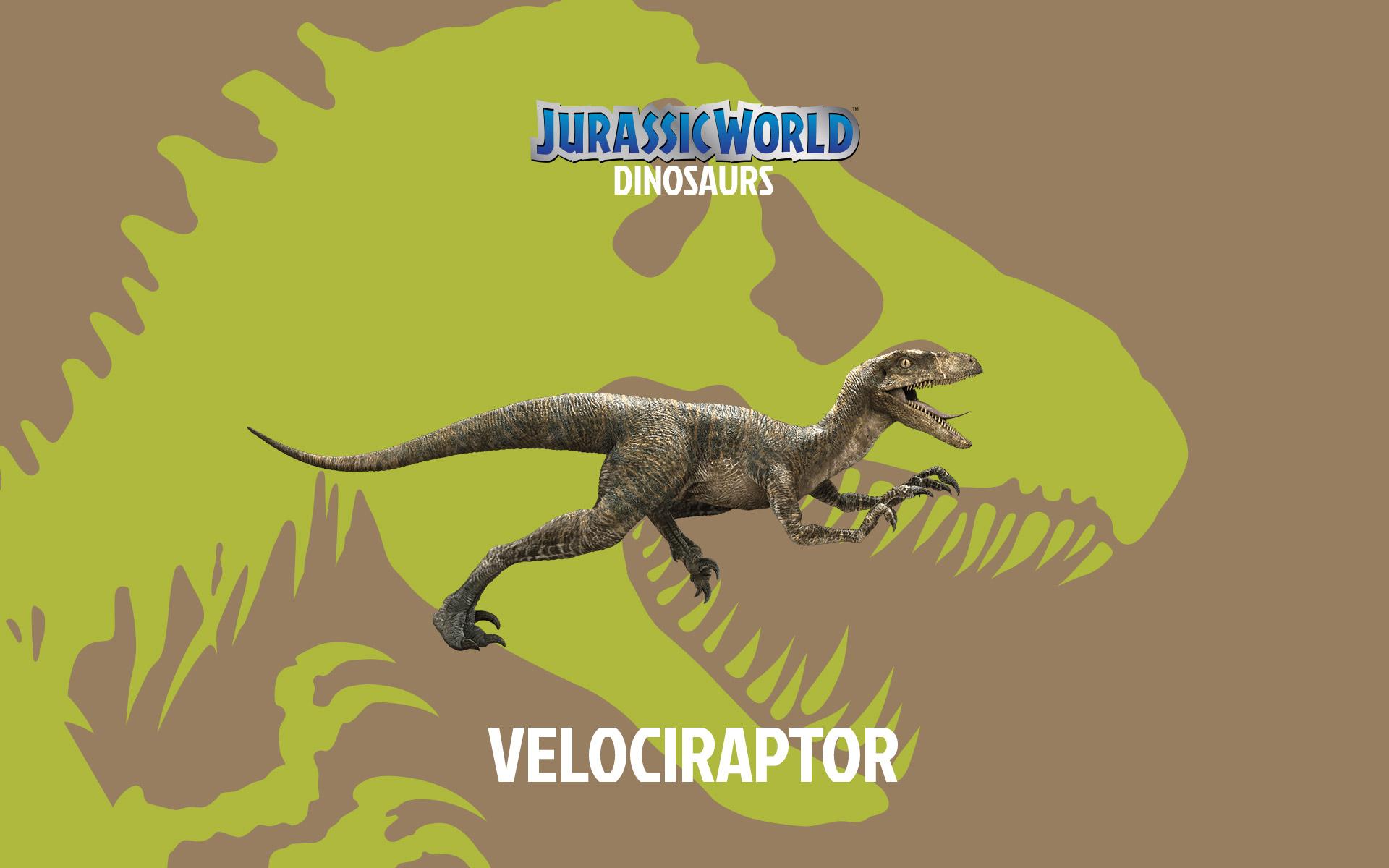 Velociraptor wallpaper for iphone wallpapersafari - Jurassic park phone wallpaper ...