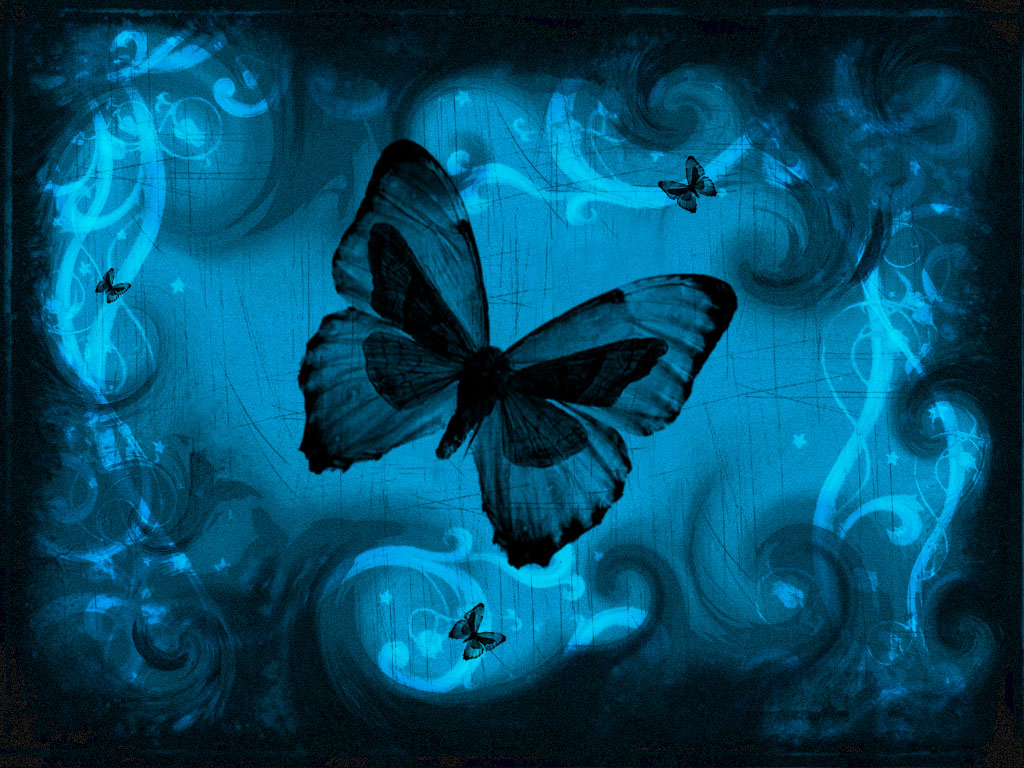 Blue butterfly wallpaper hd