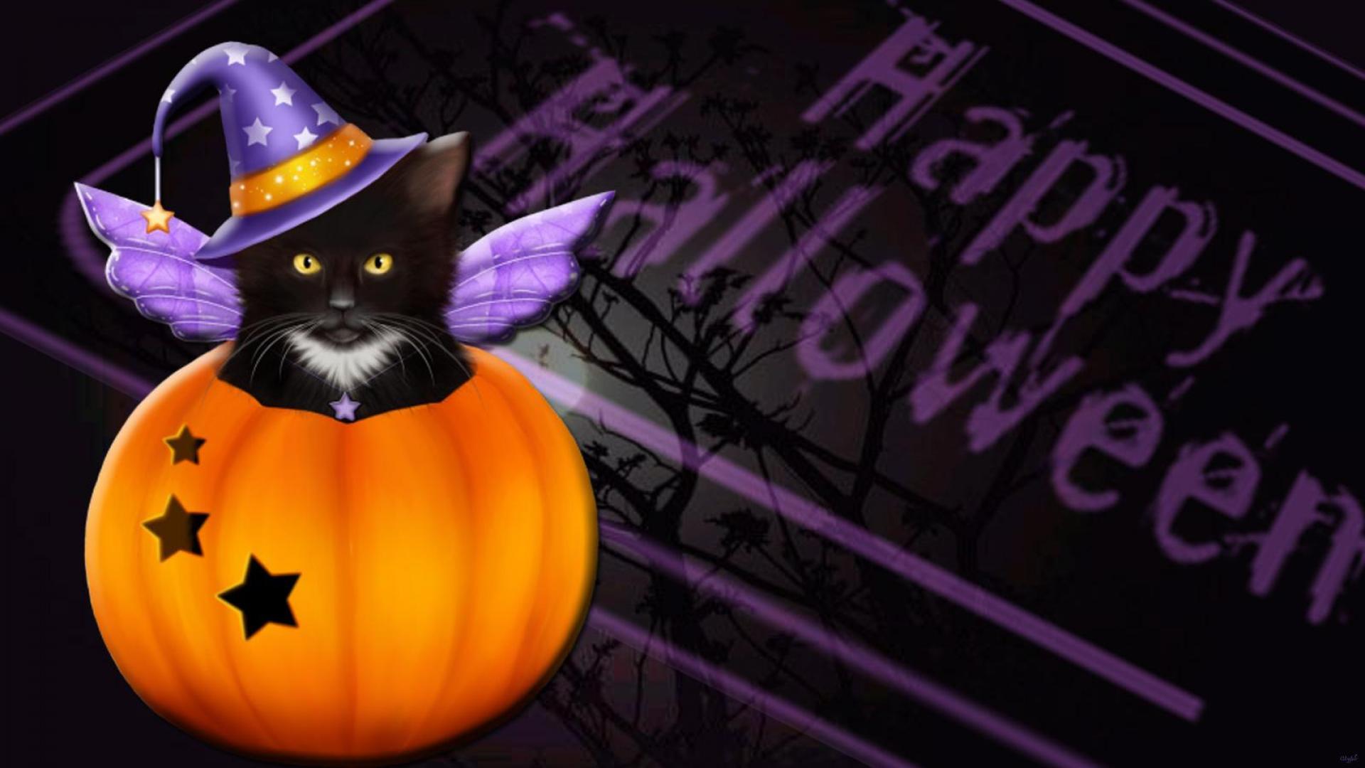 Must see Wallpaper Halloween Kitten - purdYf  Pic_757118.jpg