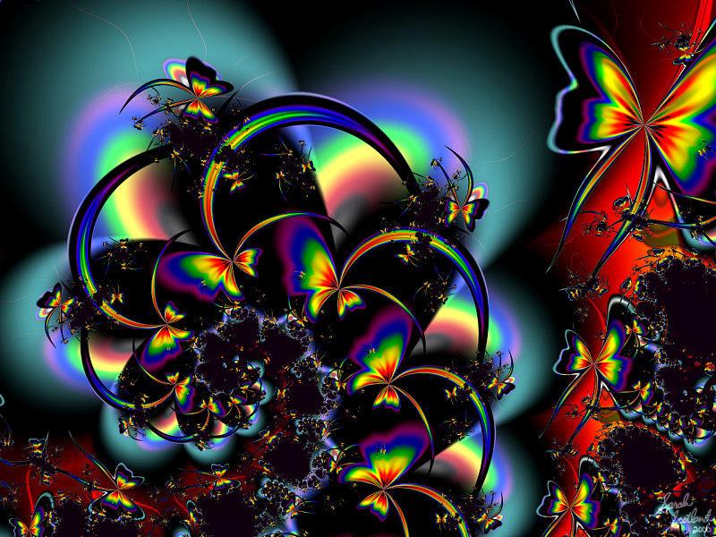 Wallpapers   HD Desktop Wallpapers Online Butterfly Wallpapers 800x600
