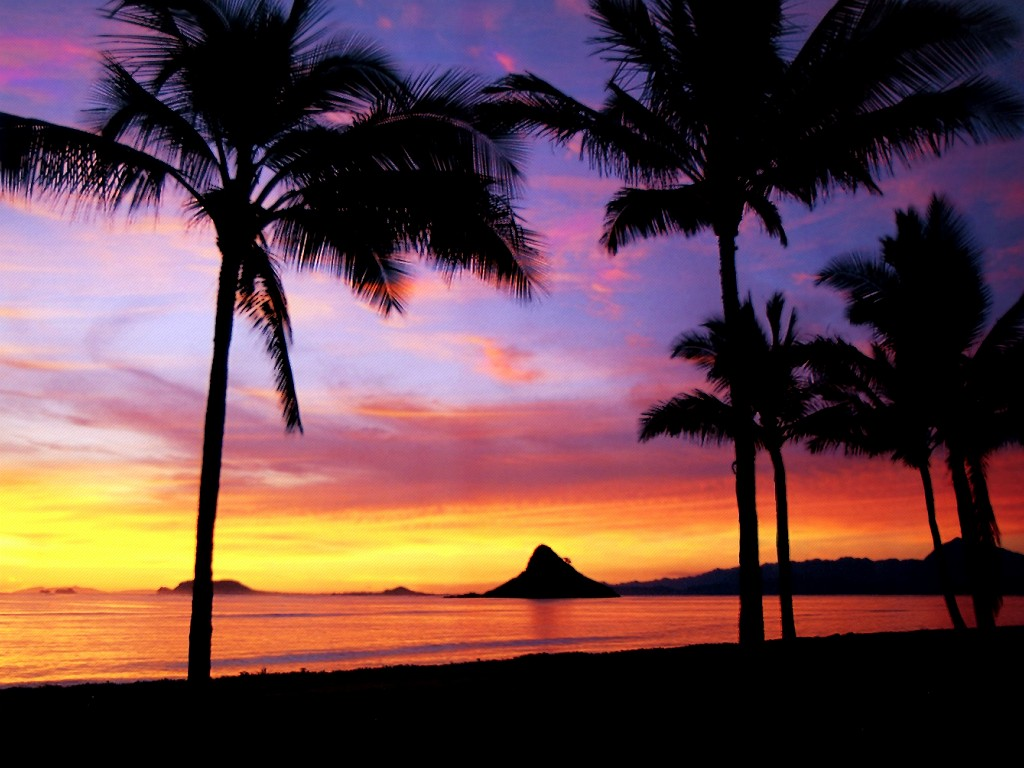 jw Hawaii Dreamin 18 World Wallpaper Collection 1024x768