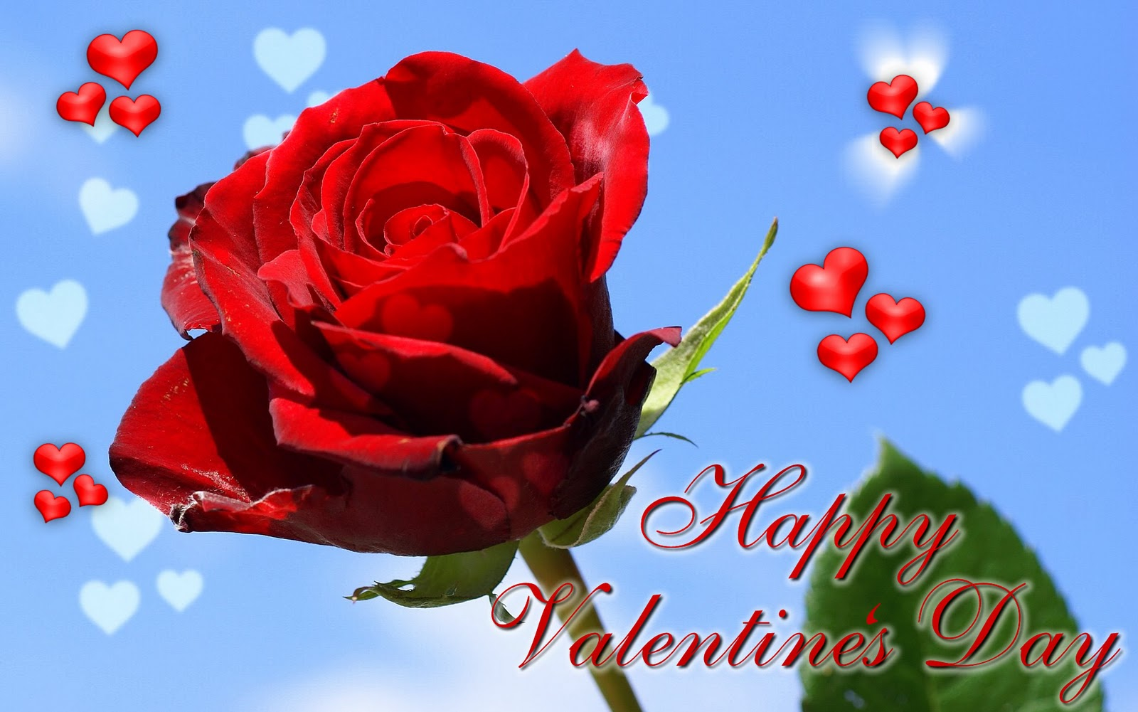 IMAGES PICTURES POEMS WALLPAPERS happy valentines day wallpaper 1600x1001