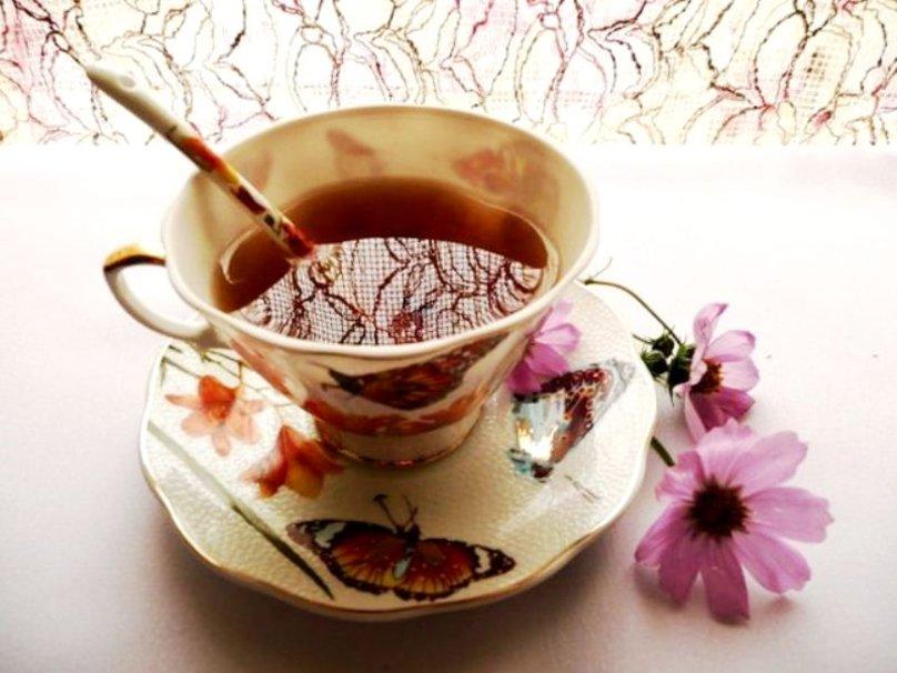 Cup of tea wallpaper   ForWallpapercom 808x606