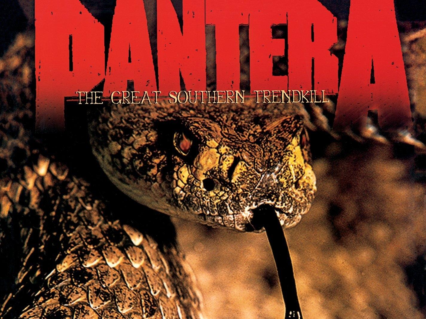 Pantera Computer Wallpapers Desktop Backgrounds 1425x1069 ID 1425x1069