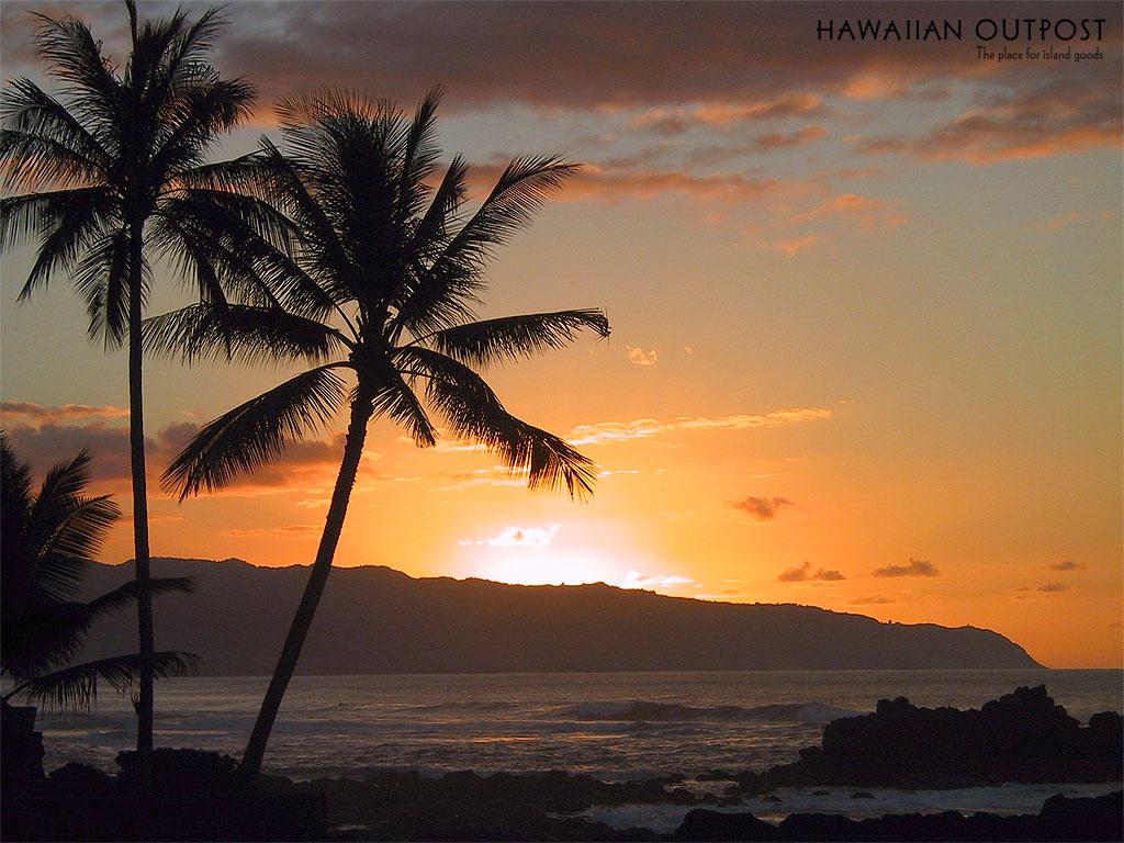 blogs goblogs Hawaii Sunset Desktop Wallpaper 1024x768