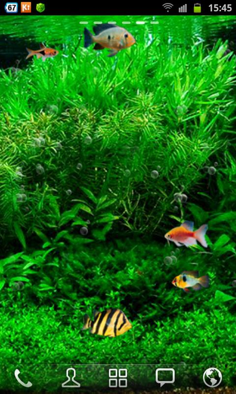 Fish Tank 3d Live Wallpaper   screenshot 480x800