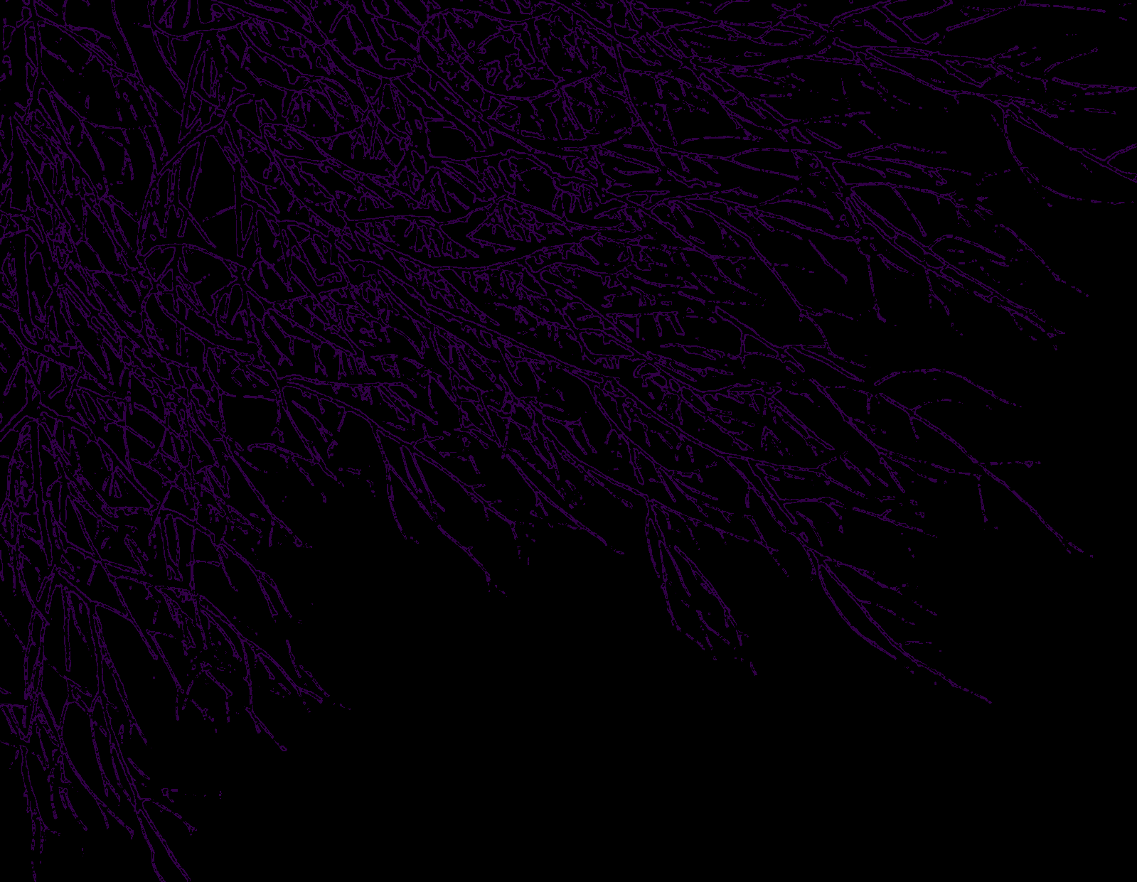dark wallpaper purple by ahelton84 customization wallpaper abstract 1599x1241