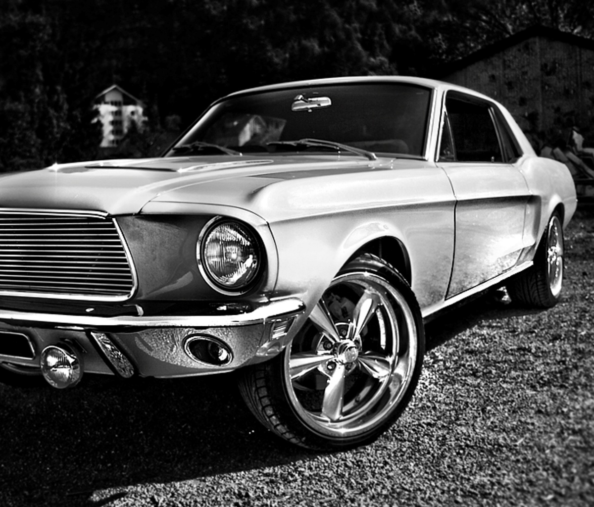 ford mustang 1200x1024 Screensaver wallpaper 1200x1024