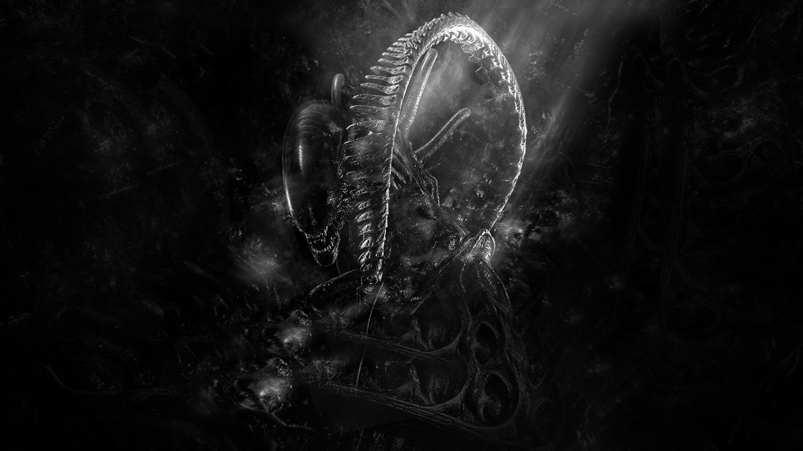 Alien Aliens images Xenomorph wallpaper 1600x900 HD 1600x900